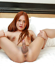 Hot new ladyboy jerk off and jism